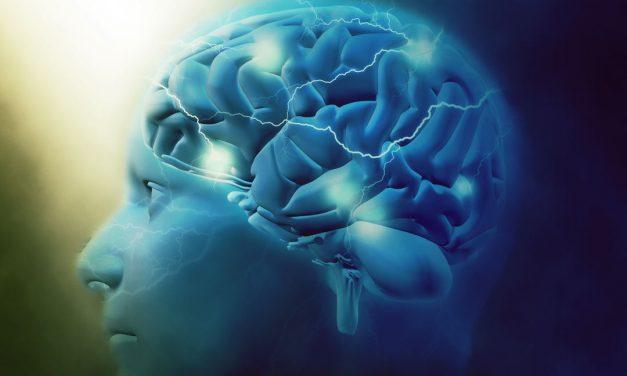 ¿Sabes cómo usar el Neuroaprendizaje a tu favor en tu entorno educativo?